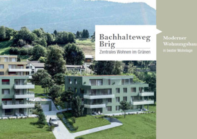 bachhalteweg_brig_titelseite